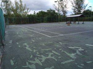 Tennis Court 2015 004